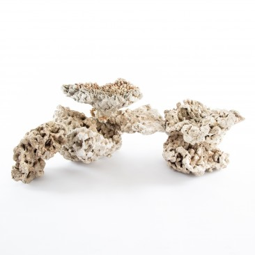 iQuatics Dried Reef Rock - Nano Pack - (10KG)