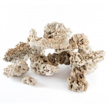 iQuatics Dried Reef Rock - Nano Pack - (5KG)