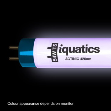 24W Juwel Aquarium T5 Fluorescent Blue Marine Actinic (420nm) Tube Bulb Colour