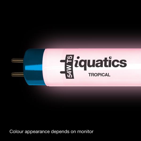 IQuatics Aquarium 54w T5 Bulb