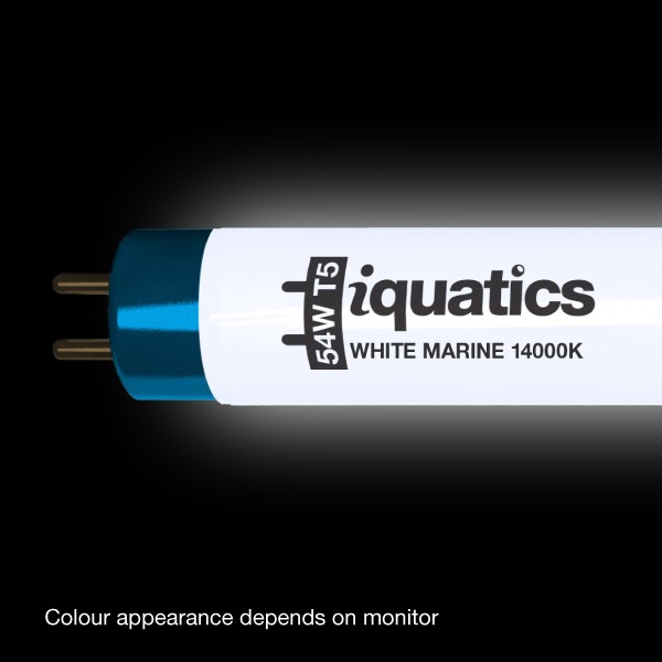 Iquatics Aqualumi T5 Controller: 3 X IQuatics 35w JUWEL Compatible T5 White Marine 14000K